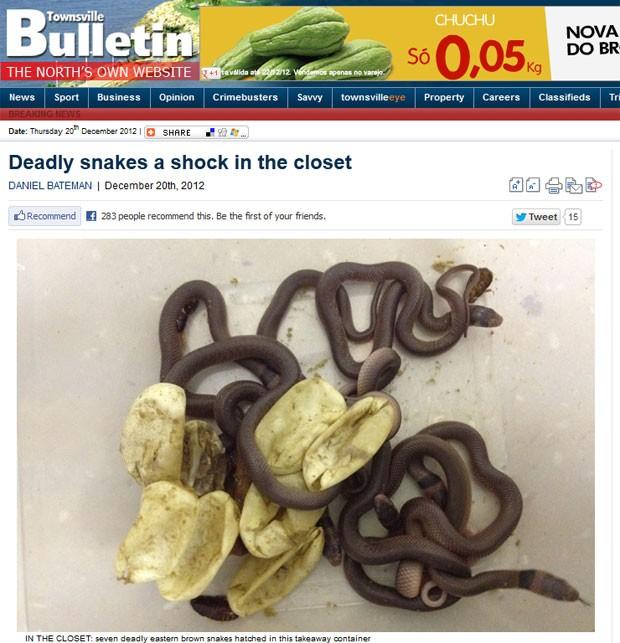 Donna Sim ficou chocada ao encontrar sete cobras venenosas no armário do filho de três anos (Foto: Reprodução)