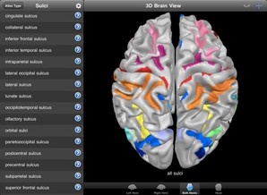 Brain Tutor HD download