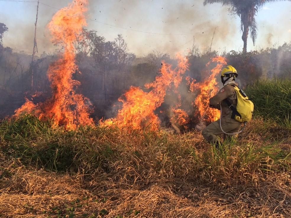Fogo consumiu uma área de 5 hectares e bombeiros levaram quase três horas para combater as chamas (Foto: Divulgação/Corpo de Bombeiros do Acre)