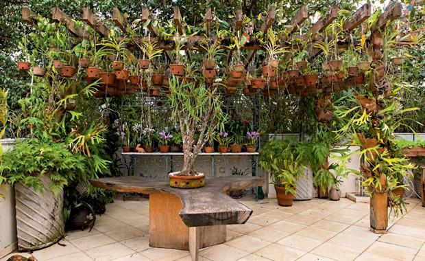pergolado possui mourões de eucalipto tratado Mais de cem vasos de