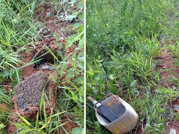 Colmeia e materiais encontrados próximos ao corpo de idoso na BR-080 em Brazlândia, no DF (Foto: Corpo de Bombeiros/Divulgação)