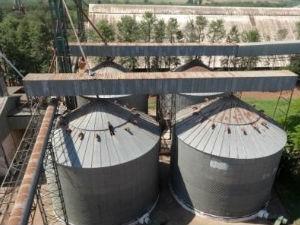 Silos de estocagem de grãos da unidade de Maracaju da Coagri, que está sendo leiloada pela Justiça (Foto: Divulgação/Canal de Leilões)
