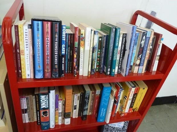 Gibis e livros podem ser levados até a instituição. rio preto (Foto: Divulgação/Santa Casa)