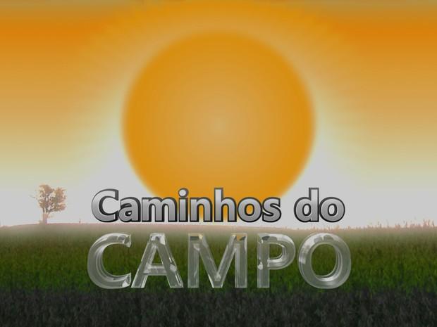 Caminhos do Campo (Foto: Editoria de arte)