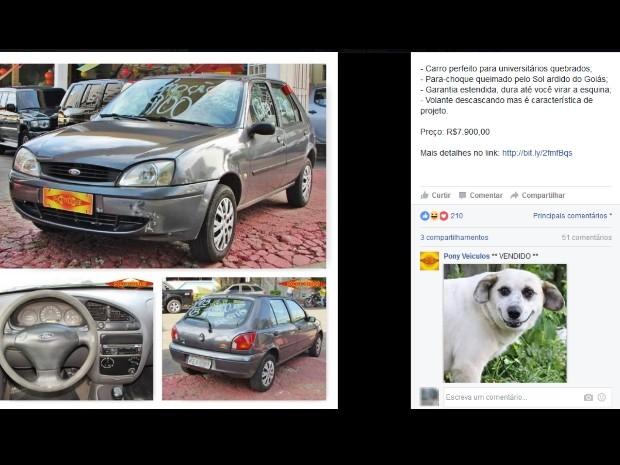 Loja de carros de Goiás faz sucesso na web com posts bem-humorados (Foto: Reprodução/Facebook)