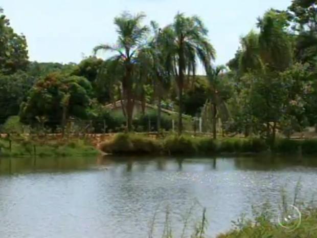 O donos dos sítios cedem água dos lagos em sistema de rodízio uma vez por semana (Foto: Reprodução/TV Tem)