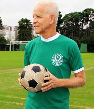 chamada carrossel Palmeiras centenário - Ademir da Guia (Foto: Sergio Gandolphi)