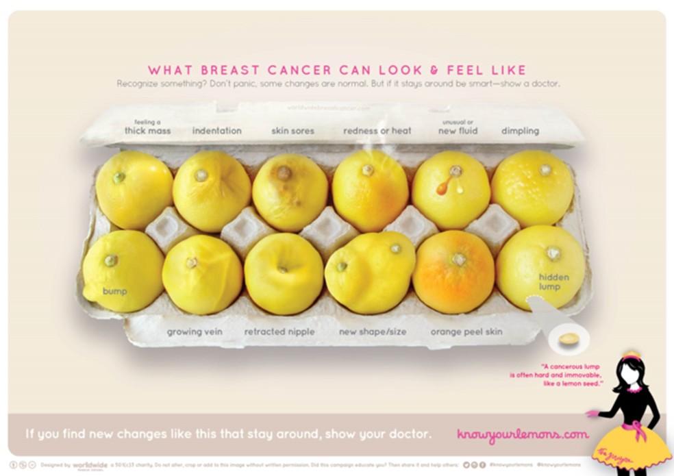 A campanha mostra em 12 limões os sinais do câncer de mama e o aspecto que a doença dá ao seio  (Foto: Worldwide Breast Cancer)