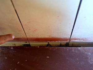 Por causa de enchente, piso e dois pilares baixaram de nível fazendo com que paredes cedessem (Foto: Yuri Marcel/G1)