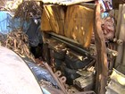 Prefeitura recolhe quatro toneladas de lixo em residência em Araçatuba