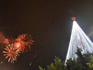 Árvore de Natal tem 54 metros de altura e chama atenção (Foto: Jonatas Boni/G1)