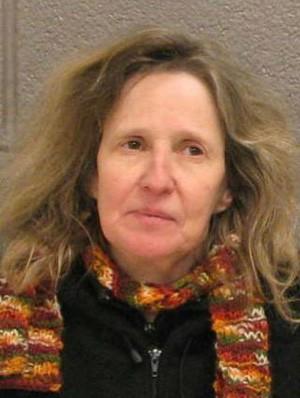 Susan Warren foi presa enquanto tirava neve da calçada de um dos vizinhos (Foto: Divulgação)