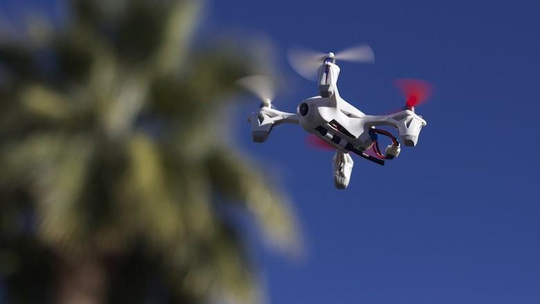 drone-tecnologia-contra-pragas-agricolas-campo (Foto: Andrew Turner/CCommons)