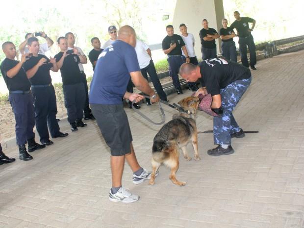 Policiais durante curso com cães em Guarujá, SP (Foto: Pedro Rezende/ Prefeitura Municipal de Guarujá)