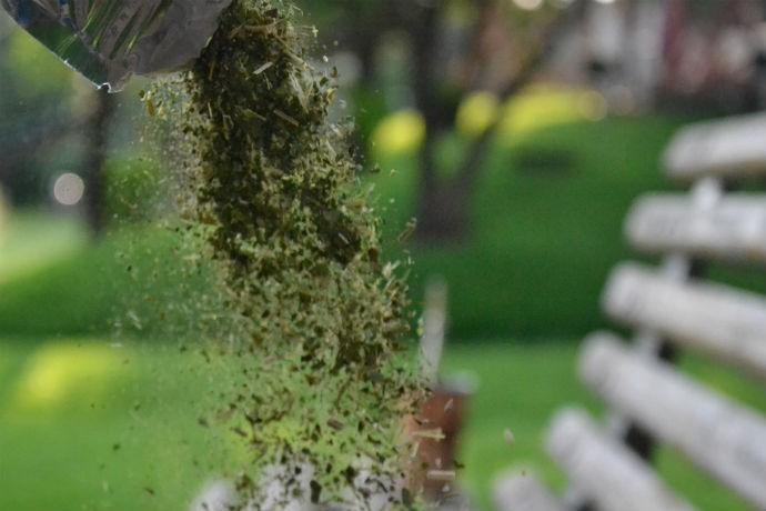 Sorvete é preparado com a tradicional erva-mate  (Foto: João Victor/Gshow)