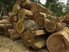 Governo quer zerar o desmatamento ilegal da Amazônia até o ano de 2030