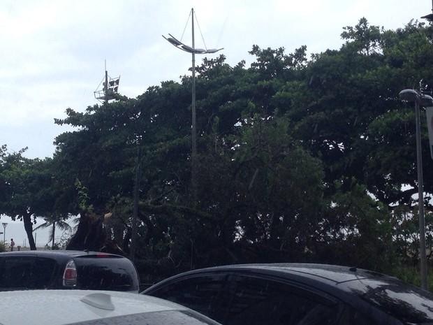 Chuvas afetaram cidades do litoral de São Paulo (Foto: Mariane Rossi/ G1)