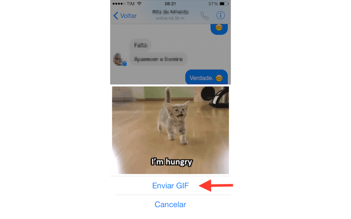 Messenger consegue enviar GIFs animados para amigos (Foto: Reprodução/Marvin Costa)