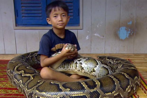 Sambath é amigo de uma cobra gigante (Foto: TV Globo)