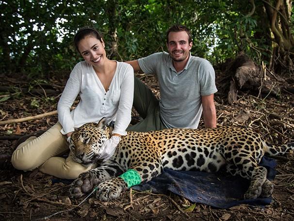 Max Fercondini e Amanda Richter conhecem um programa de preservação das onças pintadas no Pantanal (Foto: Divulgação)