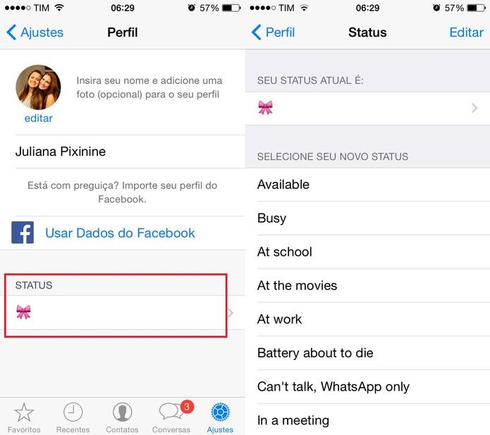 Atualize seu status no WhatsApp (Foto: Reprodução/Juliana Pixinine)