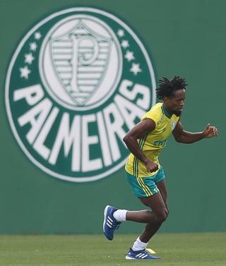 Zé Roberto Palmeiras (Foto: Cesar Greco/Ag. Palmeiras/Divulgação)