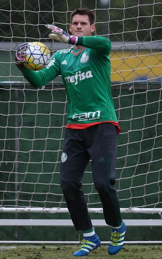Vagner Palmeiras (Foto: Cesar Greco/Ag Palmeiras/Divulgação)