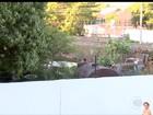 Moradores denunciam depósito da Seduc como criadouro de mosquito