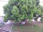 Vídeo mostra neve em Bom Jesus, na Serra do Rio Grande do Sul