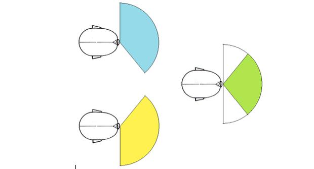 Campo de visão monocular inidvidual de 150º (esquerda) e binocular de 120º (direita) (Foto: Reprodução)