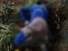 Lavrador morre atingido por raio após se abrigar debaixo de árvore em MG