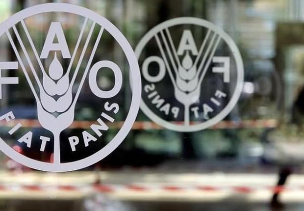 Logotipo do Food and Agriculture Organisation (FAO) em sua sede em Roma (Foto: Alessandro Bianchi/Reuters)