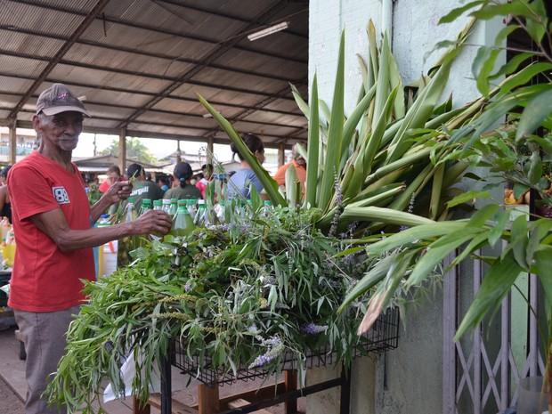 As ervas são vendidas separadamente principalmente para uso medicinal. (Foto: Glebson Viana/G1)