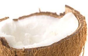 Leite de coco é versátil e incrementa receitas. Confira sugestões