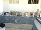 PM e PF apreendem quase meia tonelada de maconha em Caicó, RN