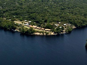 Núcleo de Conservação e Sustentabilidade fica em área cercada por floresta (Foto: Marina Souza/G1 AM)