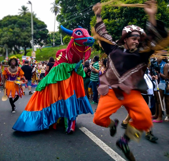 O Rancho sai no dia de Reis e em festas como São João e Carnaval (Foto: Div./Luiz Hohenfeld)