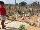 Agricultores devem ter Garantia-Safra atrasados pagos em abril em Petrolina
