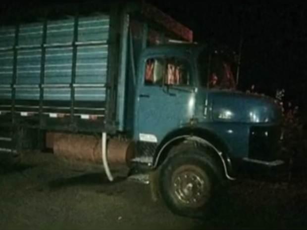 Caminhão apreendido usado para transportar o gado (Foto: Reprodução / TV TEM)