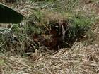 Idosa de 73 anos morre afogada após cair em fossa em abrigo de Cuiabá