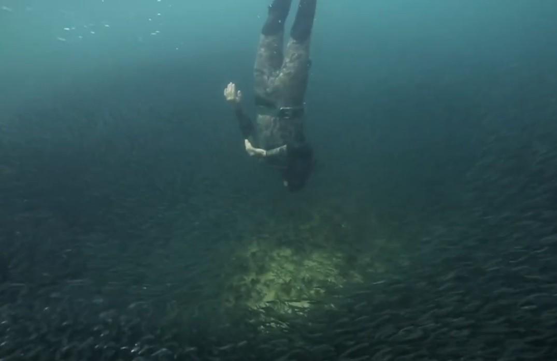 Momento em que Andre 'invade' a baitball em Coral Bay (Foto: Reproduo/Facebook/Terra Australis)
