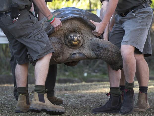 Hugo precisou ser carregado por quatro homens (Foto: Jason Reed/Reuters)