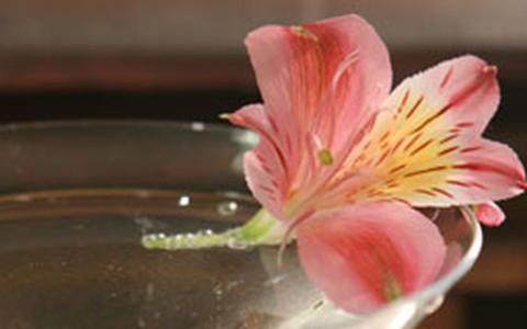 Drinque 'Flor Pequenina'