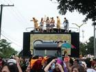 Bloco carnavalesco Galo de Manaus arrasta 30 mil foliões, diz organização