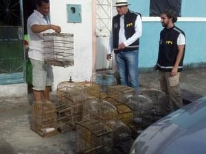 Material apreendido foi levado para o IBAMA (Foto: Divulgação/ Ascom MP)