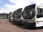 Ônibus de empresa acusada de irregularidades continuam circulando