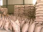 Polícia Civil prende quatro em galpão suspeito de distribuir açúcar roubado