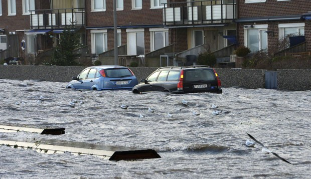 Gaivotas voam ao lado de carros abandonados na em uma rua inundada em Helsingborg, no sul da Suécia (Foto: Johan Nilsson/ Reuters)