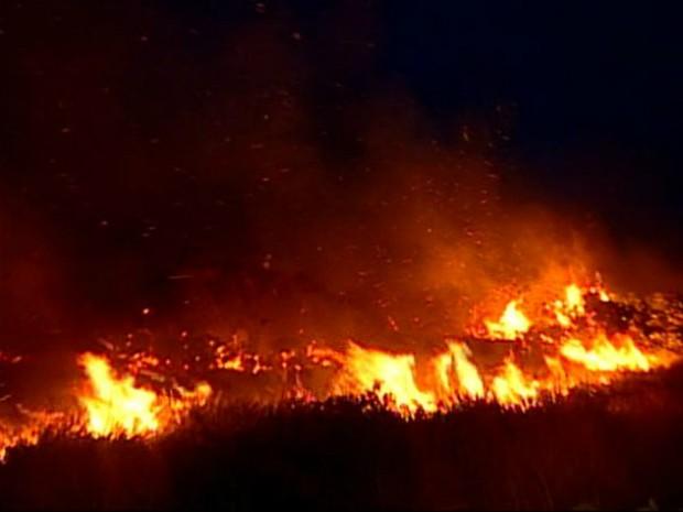 Incêndio destruiu 15% da vegetação da reserva (Foto: Reprodução/ TV Gazeta)