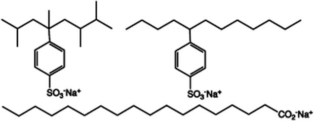 Molécula de detergente e sabão (Foto: Wikipedia)